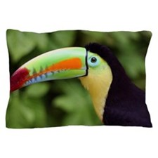 Tucan Pillow Case