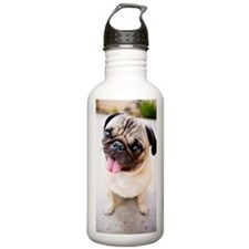 Cute pug Water Bottle