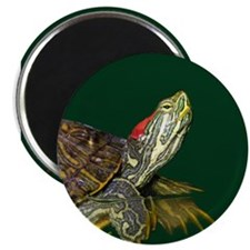 "Lively Red Eared Slider 2.25"" Magnet (100 pack)"