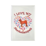 Love Norrbottenspets Rectangle Magnet