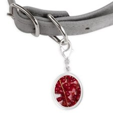 Cranberries Small Oval Pet Tag