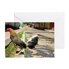 Fighting rooster Greeting Card