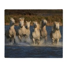 White horses of Camargue, France Throw Blanket