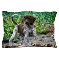 German shorthaired pointer puppy Pillow Case