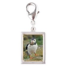 Nesting puffin Silver Portrait Charm