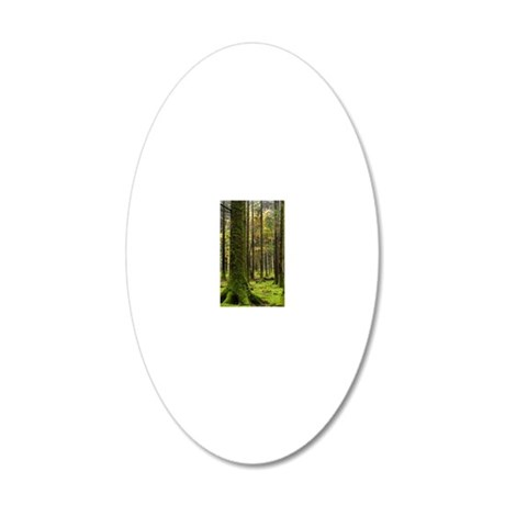 Gougane Barra Forest Park 20x12 Oval Wall Decal