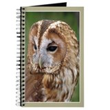 ...Tawnt Owl... Journal