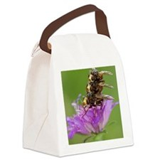 Thick-headed flies (Sicus ferrugi Canvas Lunch Bag