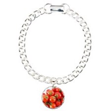 Studio shot of tomatoes Bracelet