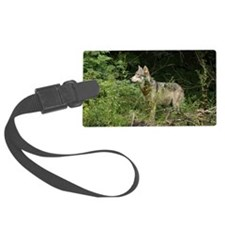 Gray Wolf - Canis lupis Luggage Tag