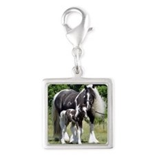 Champion Gypsy mare and colt Silver Square Charm