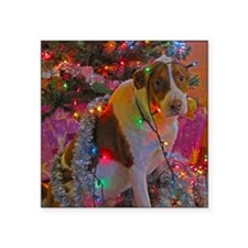 "Merry Christmas Mutt Square Sticker 3"" x 3"""