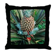 Pineapple plant with fruit Throw Pillow