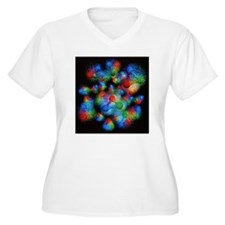 Quark structure o T-Shirt
