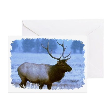 Bull Elk Greeting Cards (Pk of 10)