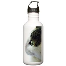 Green Eyed White Tabby Water Bottle
