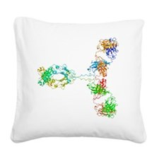 Immunoglobulin G antibody mol Square Canvas Pillow