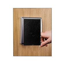 Fingerprint scanner Picture Frame