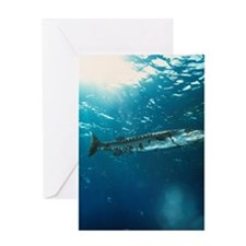 Great barracuda Greeting Card