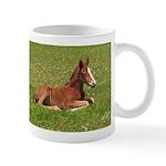 Sunshine Foal Horse Lover Coffee Mug