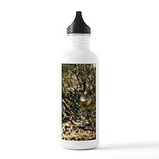 golden xmas Water Bottle