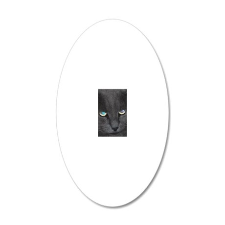 Unique Cat w/ Cool Eyes 20x12 Oval Wall Decal