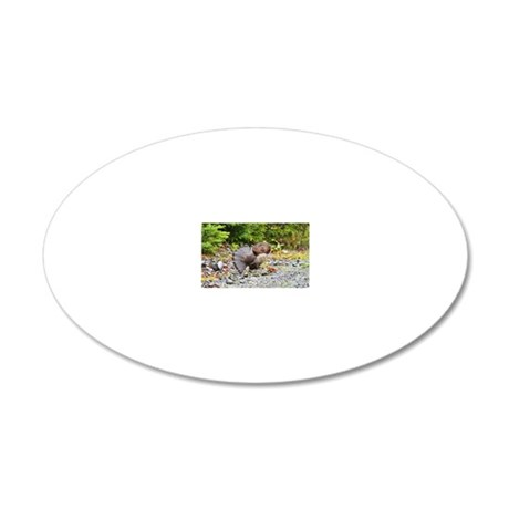 oval patch 10 20x12 Oval Wall Decal