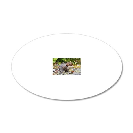 6x4_pcard  10 20x12 Oval Wall Decal