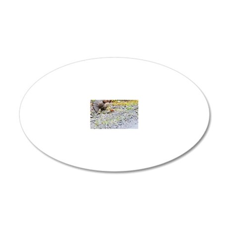 662_h_f  pic frame 6 20x12 Oval Wall Decal