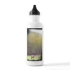 Fjord Love Water Bottle
