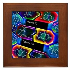 DNA molecule Framed Tile