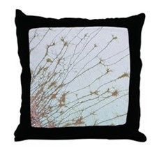 Nerve cell culture, SEM Throw Pillow