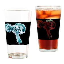 Neutrophil white blood cell, SEM Drinking Glass