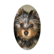 I Luv Yorkies Wall Decal