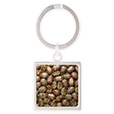 Seeds of the castor oil plant Square Keychain