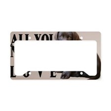 lb_car_flag_713_H_F License Plate Holder