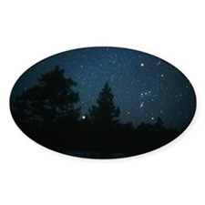 Starfield including Orion, Sirius Decal