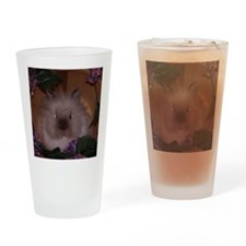 lionhead rabbit Drinking Glass