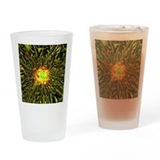 Neurosphere culture Drinking Glass