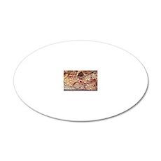 Pancreas tissue, SEM 20x12 Oval Wall Decal
