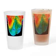 Scrotum thermogram Drinking Glass