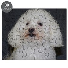 Portrait of a Maltipoo Puzzle