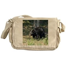 MP_Bear_2 Messenger Bag
