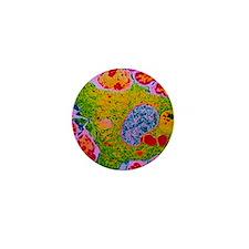TEM of human macrophage Mini Button