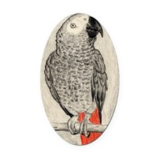 African Grey in Pencil Oval Car Magnet