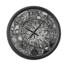 Transmission electron micrograph  Large Wall Clock