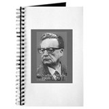 Allende Journal
