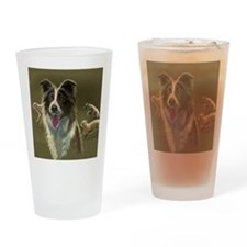 Border Collie with Sheep Drinking Glass