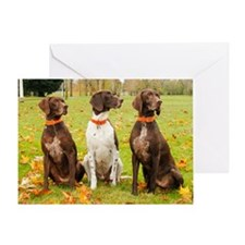 11nov_mac-gsps Greeting Card
