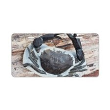 Chaceon fossil crab Aluminum License Plate
